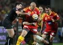 Perpignan hooker Marius Tincu rumbles forward