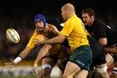 Tri-Nations: Australia 28-49 New Zealand