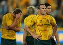 Matt Giteau is shattered by their defeat to New Zealand
