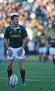 Springboks fly-half Morne Steyn lines up a kick
