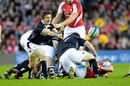Scotland scrum-half Rory Lawson feeds his backs