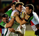 Northampton's Martin Roberts is crushed by two Quins defenders