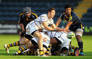 Wasps replacement scrum-half Charlie Davies releases his backs