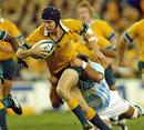 Australia's Stephen Larkham stretches the Argentina defence