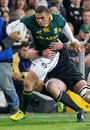 South Africa's Bryan Habana stretches the All Blacks' defence