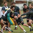 Ben Mowen hits the tackle bag during a Wallabies training session,