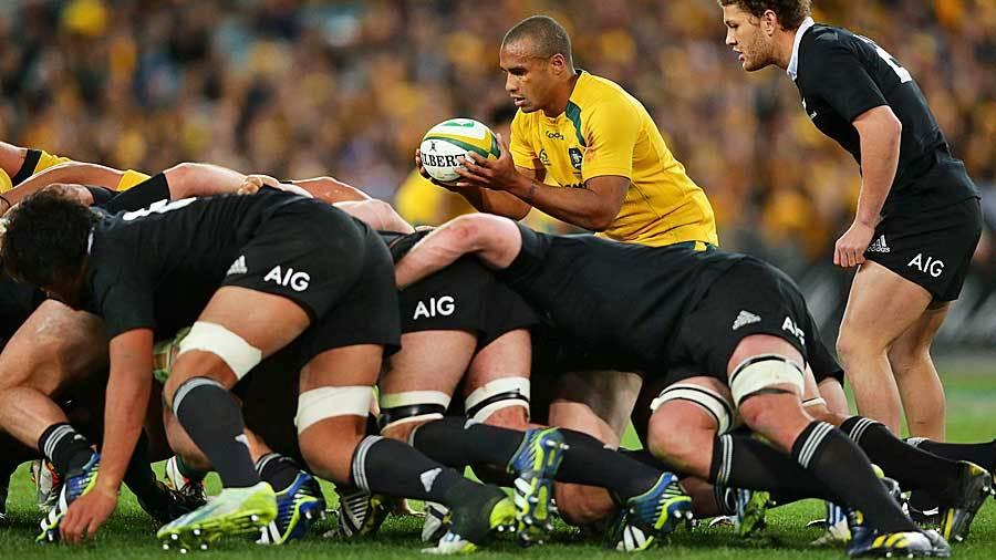 New Zealand want to cull third Bledisloe Test