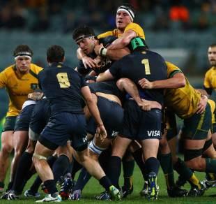 Australia's Kane Douglas controls the maul , Australia v Argentina, Rugby Championship, Paterson's Stadium, Perth, Australia, September 14, 2013