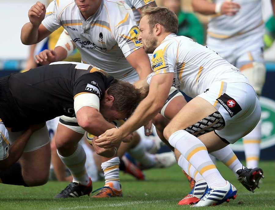 Wasps' Matt Mullan burrows towards the try line