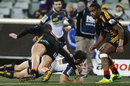 Brumbies scrum-half Nic White dives over for a try