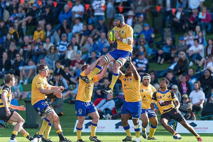Brisbane City's James Horwill wins a lineout