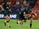 Lions' Robert Kruger takes on Mark Abbott