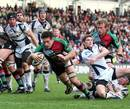 Harlequins' Tom Guest dives over to score a try against Sale