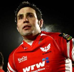 Scarlets fly-half Stephen Jones, Scarlets v Bristol, Anglo-Welsh Cup, Stradey Park, Llanelli, October 24, 2008