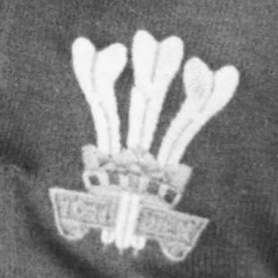 Wales badge, circa 1974